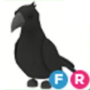Crow Adopt Me