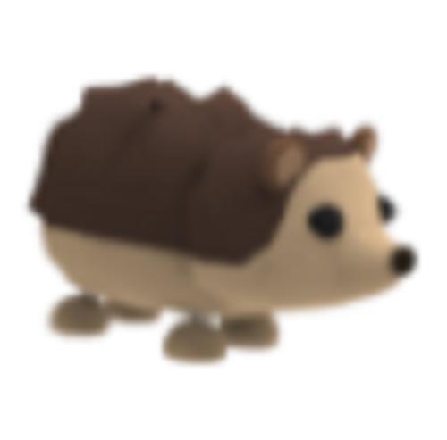 Hedgehog AdoptMe