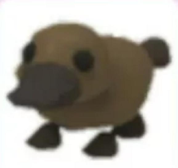 Platypus - Adopt Me