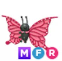 Mega Butterfly MFR